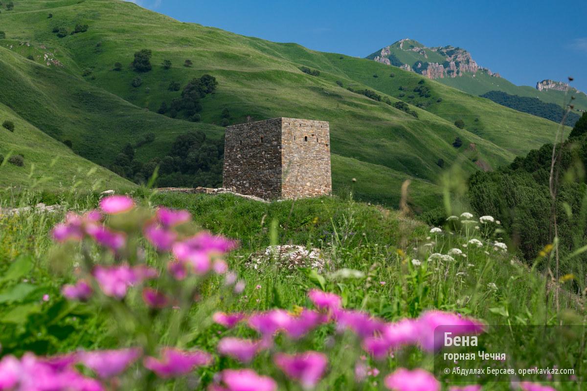 Бена (чеч. Бена-кха, «Бена пашня») - башня вблизи селения Моцарха